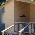 Cowra Cabin Accommodation